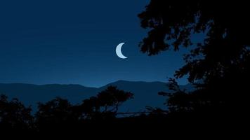 Night Scene Landscape With Tree Silhouette And Moon vector