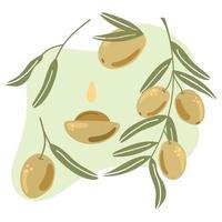 Set of hand drawn olives. Flat illustration. vector
