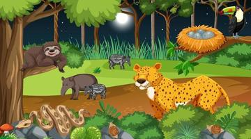 Forest at night scene with different wild animals vector
