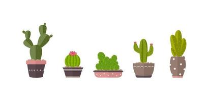 Home plants cactus in pots and with flowers. Cactus icons vector