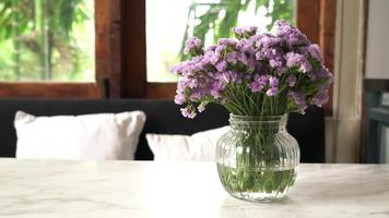Statice flowers in vase, static image video