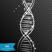 Dna Helix Low poly wireframe vector