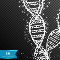 DNA molecule Low poly wireframe vector