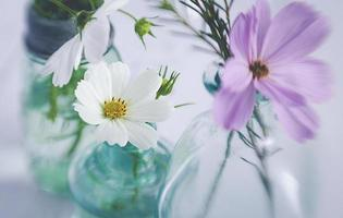 Purple and white flowers in a beautiful soft vase photo