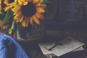 Close-up of white flowers with vintage style message paper photo