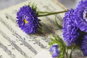 primer plano, de, flores azules, y, notas musicales foto