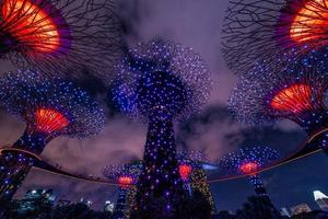 Singapore, Apr 30, 2018 - The sound and light show of the Supertree Grove photo