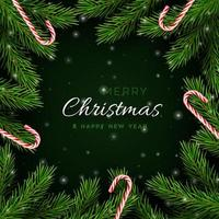 Christmas banner with tree branches and candy canes. vector