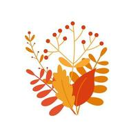 bouquet of autumn leaves and berries vector
