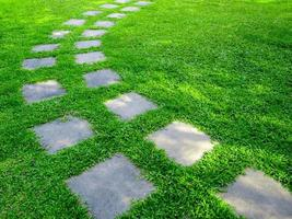 Stone or brick walkway on green lawn outdoors photo