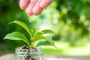 Moneda en frasco con cultivo de plantas, ahorrar dinero y concepto de inversión foto
