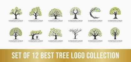 best tree logo collection set, perfect for company logos. vector
