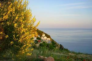 Seascape with coastline covered with vegetation. photo