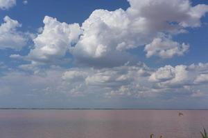 White clouds over the pink salt lake photo