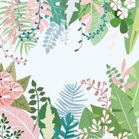 Sweet botanical tropical flower and leaf frame vector