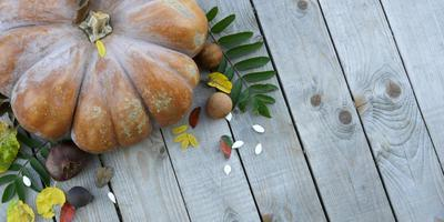 Pumpkin on a wooden background with an empty field for text photo