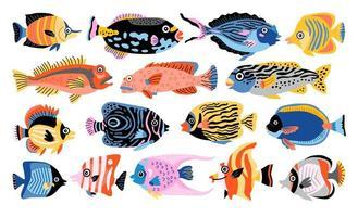 Tropical fish vector set. Isolated cartoon icon