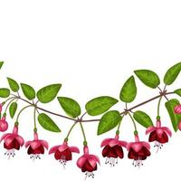 Fuchsia Seamless Border vector