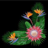 Tropical Bouquet CornerComposition vector