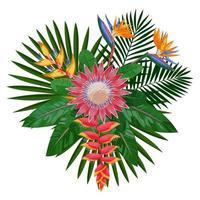 Tropical Bouquet Composition with Protea vector