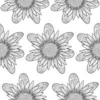 Protea Coloring Page Wallpaper vector