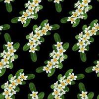 Plumeria Seamless Pattern vector