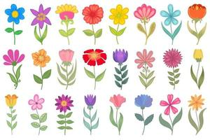 Colorful floral set. collection of vector floral illustrations