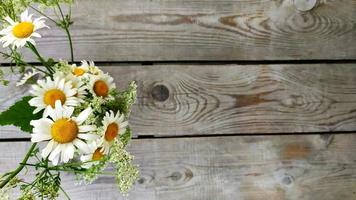 ramo de margaritas. flores de manzanilla en un jarrón foto