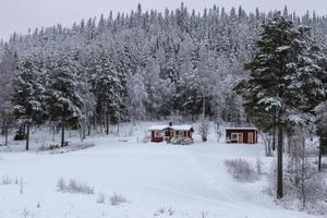 cabaña con un bosque nevado de fondo. foto