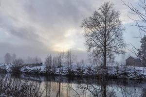 Foggy day with a tree reflecting in a calm river. photo
