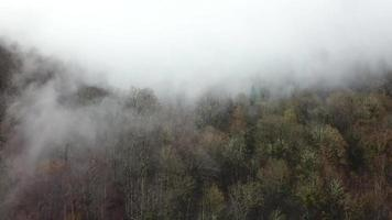 Aerial view. Misty fog over forest. Sochi, Russia. video