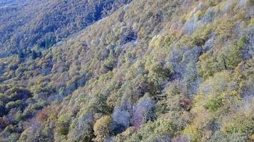 Aerial view of forest of the Caucasus mountains in autumn, Russia. video