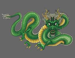 chinese dragon green vector