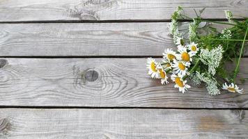 ramo de margaritas. flores silvestres manzanilla se encuentran en el porche foto