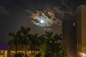maravillosa luna llena dramática con nubes detrás de palmeras playa mexico. foto