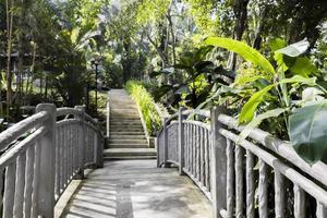 Sendero tropical a través del pequeño puente gris, Malasia. foto