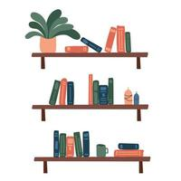 Bookshelves with a potted plant and candles. vector