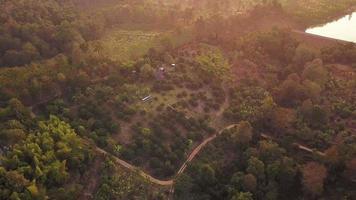 veduta aerea di una foresta pluviale in thailandia video