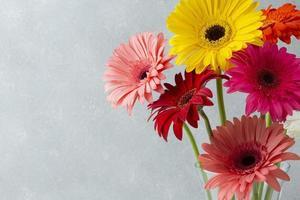 Copie el fondo del espacio con flores de gerbera foto