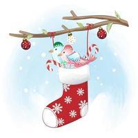 Cute Birds in the sock hanging. Christmas season vector