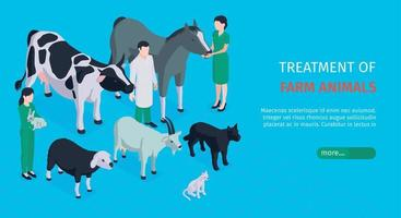 Veterinary Horizontal Banner vector