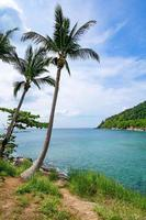 Rocky seashore under clear blue sky photo