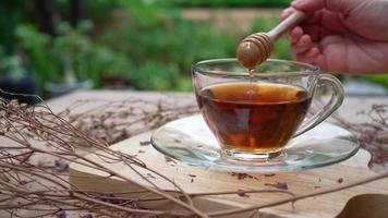 woman add honey into hot tea at home video