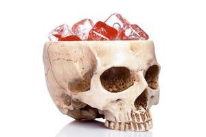 taza de un cráneo humano aislado foto