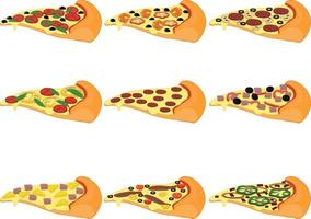 Pizza slices types with different toppings collection vector