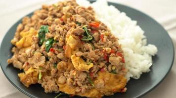 stir-fried minced pork with fried egg and basil on rice video