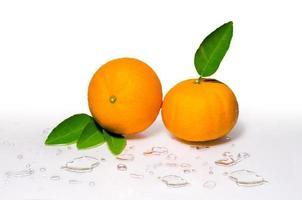 Orange fruit Orang slice isolate on white With clipping path Orange background white photo
