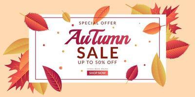 Autumn sale background template design vector