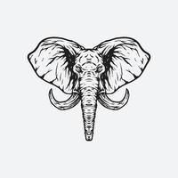 Elephant head illustration vector