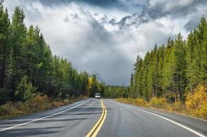 Asphalt highway in autumn pine forest and gloomy sky at Banff national park photo